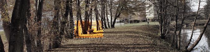Základy focení - 3.část - Formáty fotografií